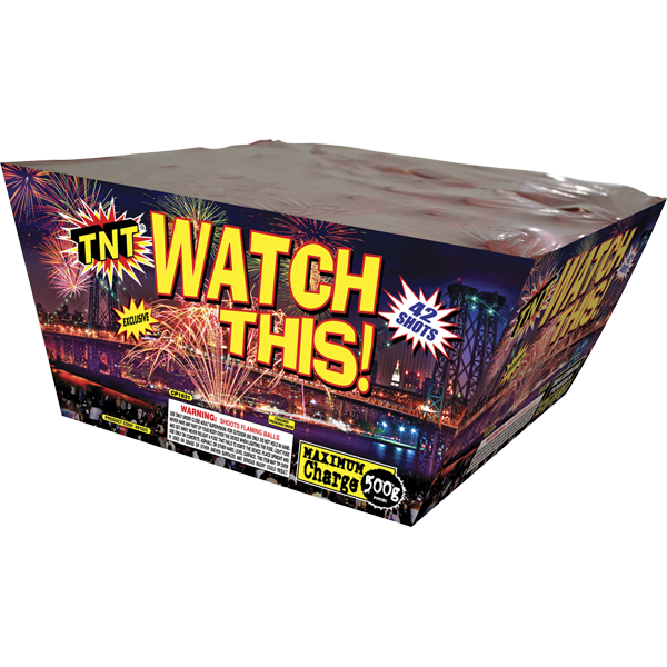 500 Gram Firework Aerial Finale Watch This!