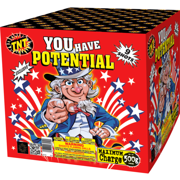 500 Gram Firework Aerial Finale You Have Potential