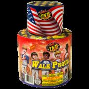 Firework Fountain Walk Proud Thumbnail 1