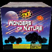 500 Gram Firework Aerial Finale Wonders Of Nature Thumbnail 1