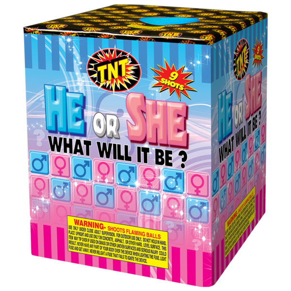 Firework Aerial Finale He Or She What Will It Be? Boy
