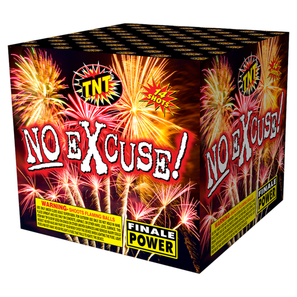 500 Gram Firework Aerial Finale No Excuse!