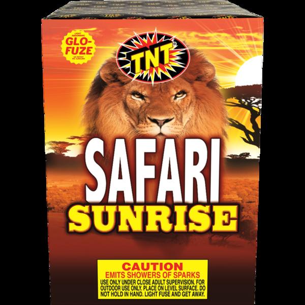 Firework Fountain Safari Sunrise