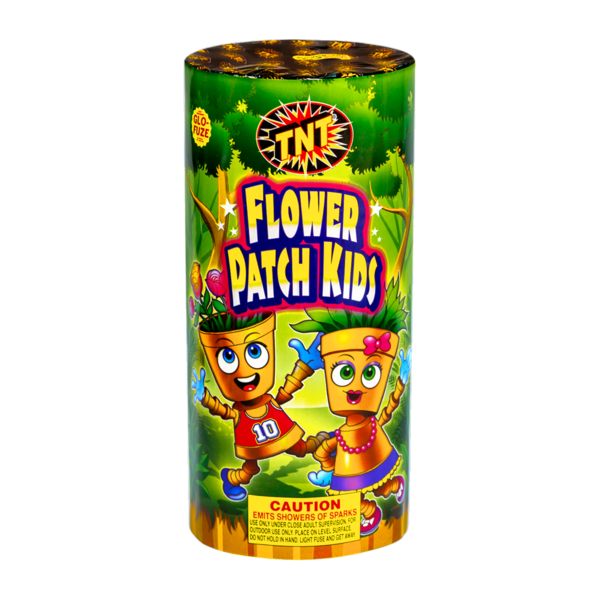 Firework Fountain Flower Patch Kids
